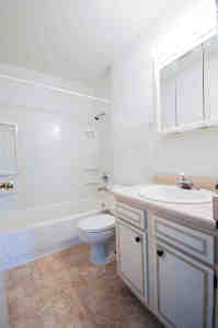 Picture of generous-sized, brightly lit bathroom